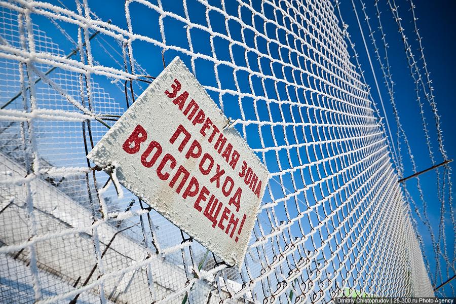 Житель Апатитов проведет год в колонии за оскорбление полицейского