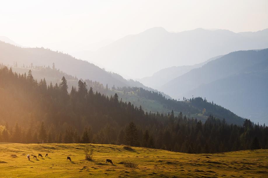 Пейзажи Грузии фотографа Дмитрия Чистопрудова