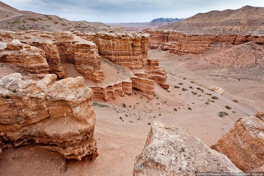 скачать каньон торрент