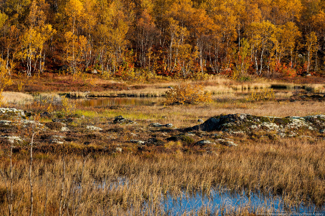 http://images.chistoprudov.ru/lj/travel/kolskiy_3/02/01.jpg