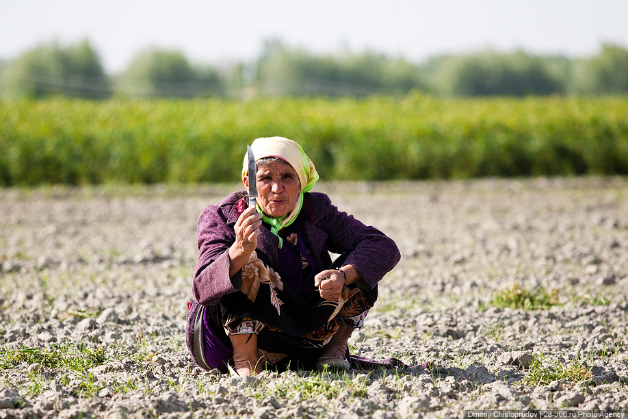 Тов Хичъ - Тоталитарная жизнь Узбекистана - Narod ru